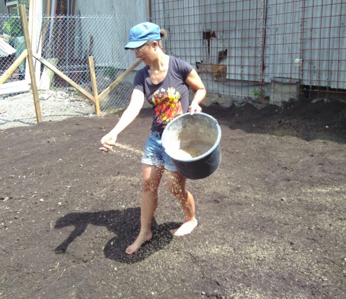 Flurina Egli, Teil der Hühner-Gruppe, verteilt die Grassamen.