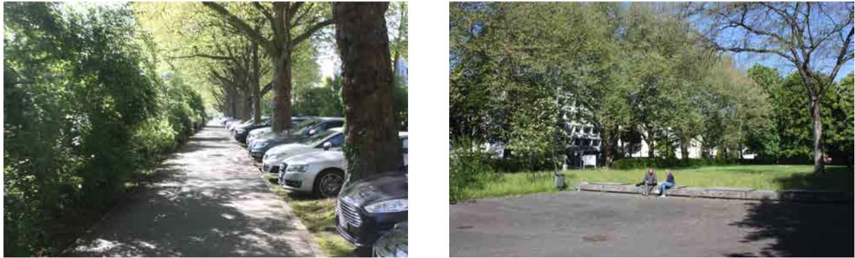 Unattraktiver Fussgängerweg und veraltete Anlagen am Alpenquai. (Bilder: zvg)