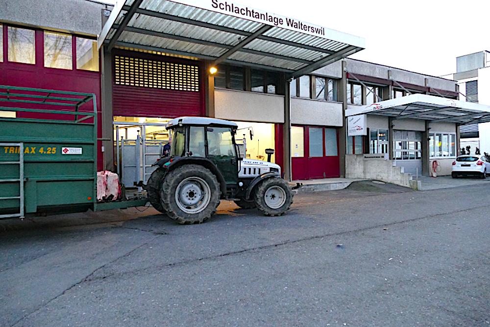 Die Schlachtanlage Walterswil in Baar.