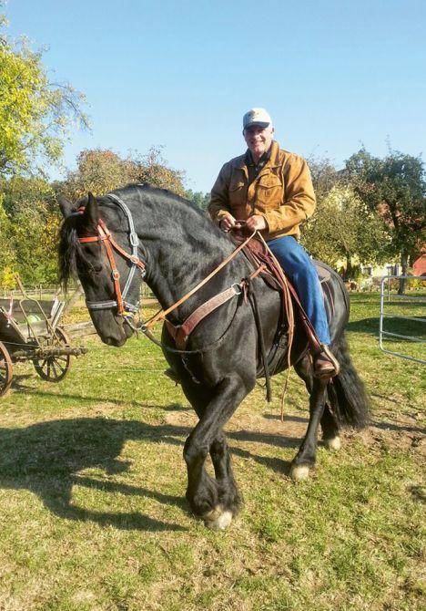 Ariel Lüdi auf einem seiner Quarter Horses.