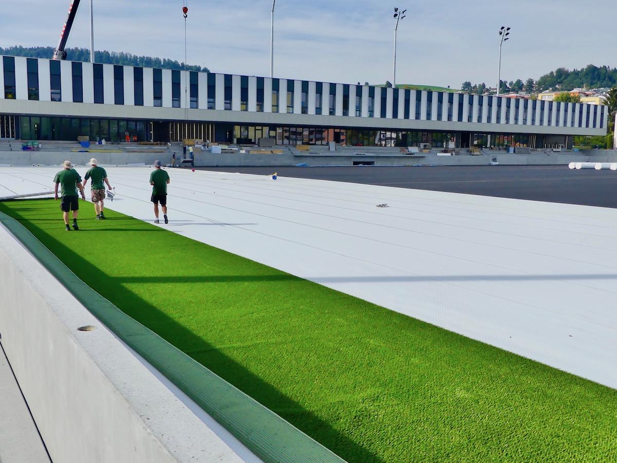 Bis Ende Woche soll das ganze Feld in Grün erscheinen.