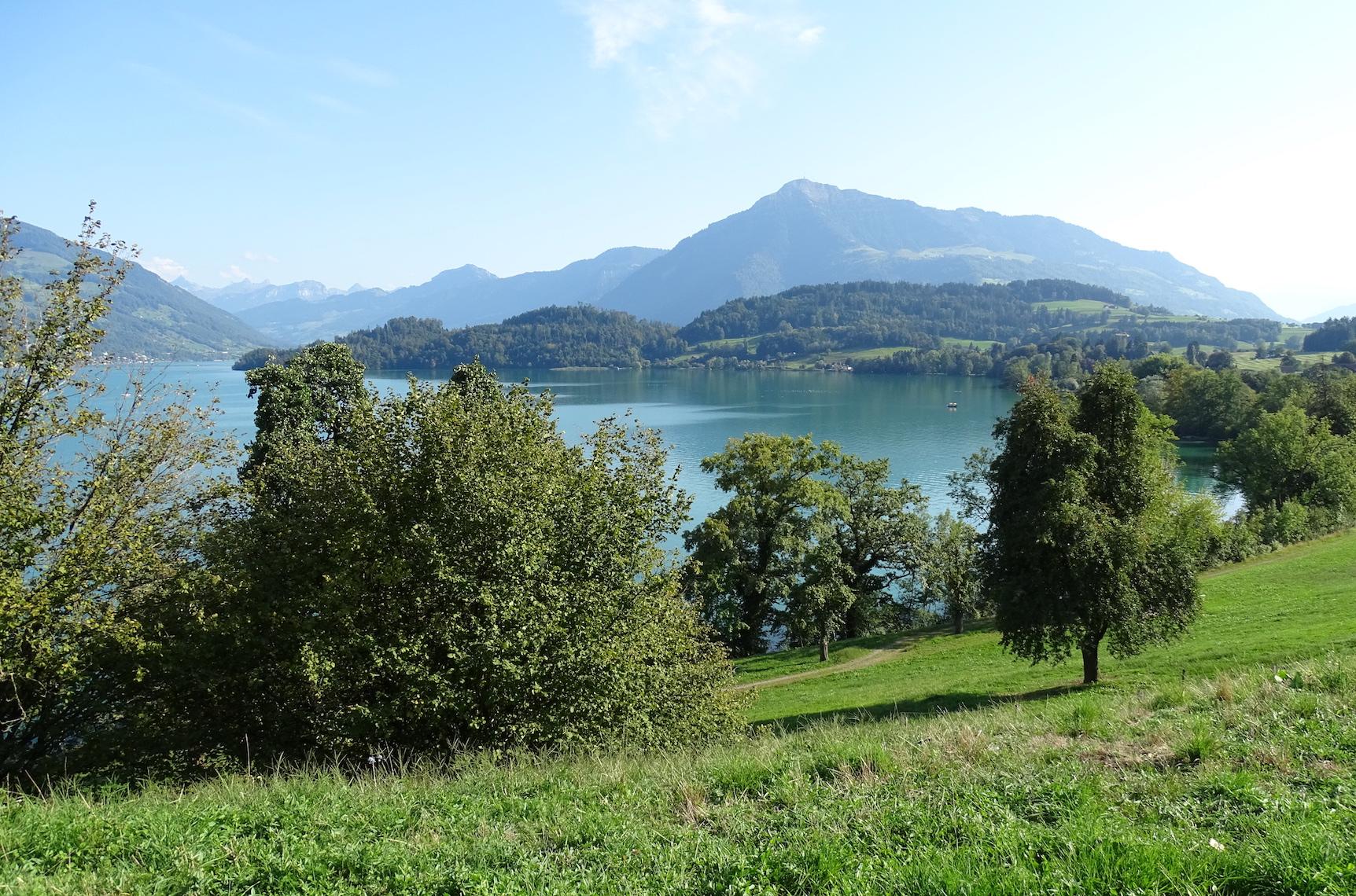 Aussicht vom Bauland beim Waldheim in Risch.