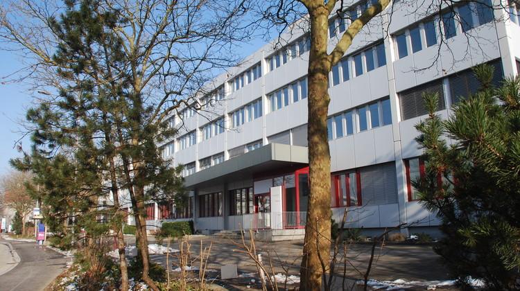 An der Hinterbergstrasse sind vor einem Jahr Künstler und Unternehmer eingezogen.