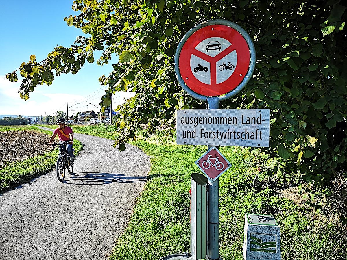 Auf diesem Radweg zwischen dem Campingplatz Brüggli und der Chollermühle in Zug dürfen schnelle E-Bikes nicht fahren – es sei denn der Motor wird ausgeschaltet.