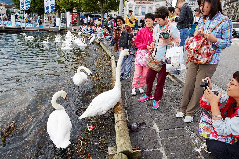 Wie viele dürfen's sein? Touristen am Schwanenplatz.