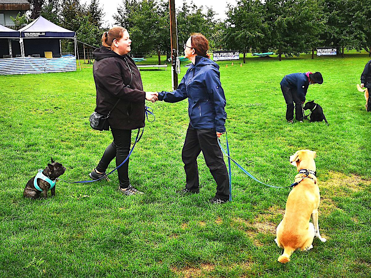 «Hello, nice to meet you!» Während sich Frauchen unterhält, muss der Hund ganz ruhig am Platz sitzen.