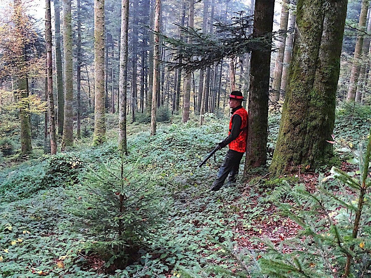 Der Regierungsrat im Wald: Das Warten auf den Bock erfolgt in meditativer Stille.