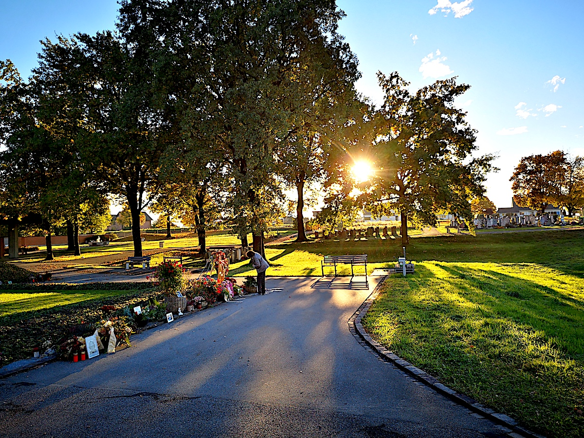 Wie ein schöner, natürlicher Park wirkt der Friedhof Erli in Steinhausen.