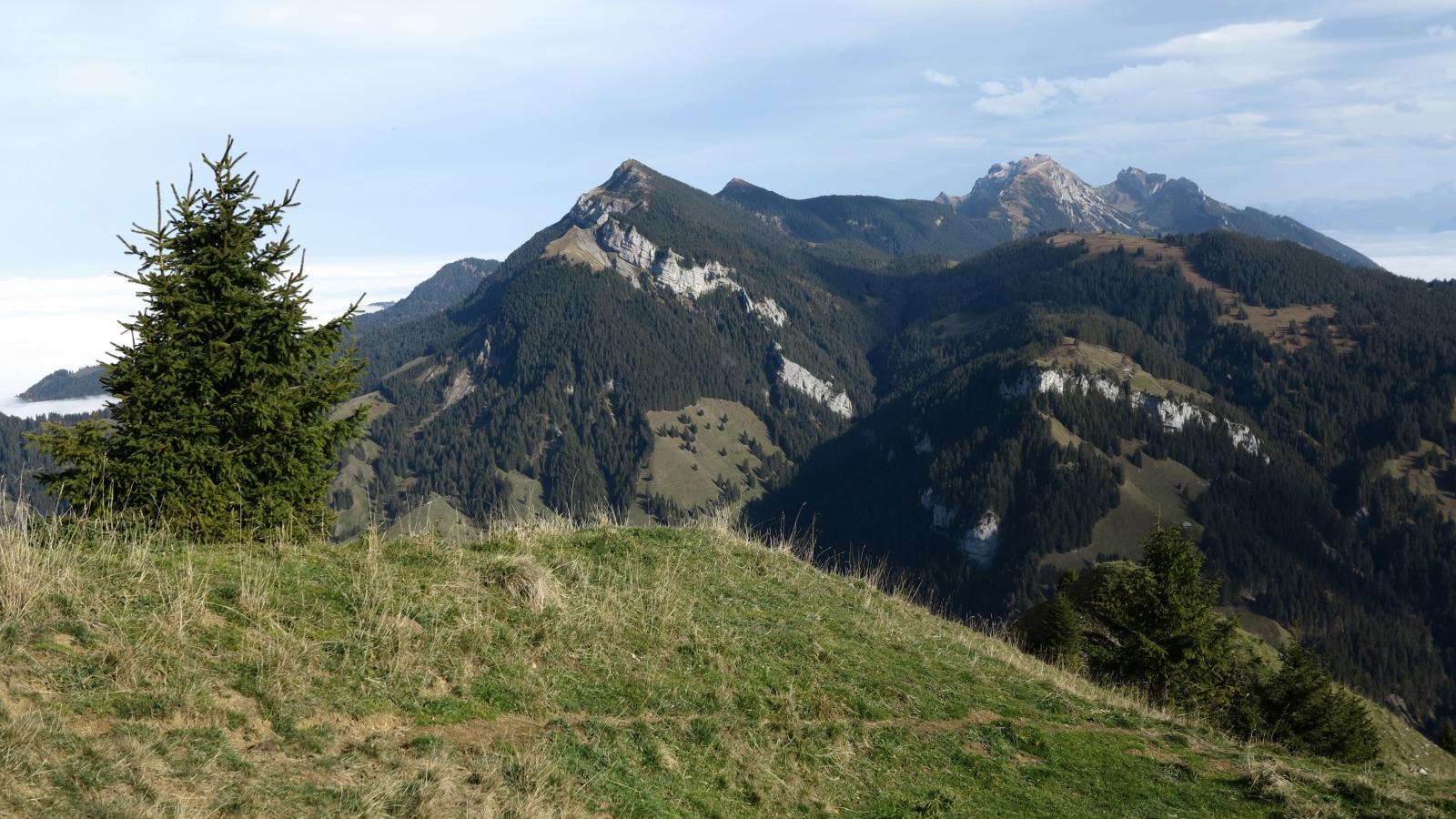 Im Aufstieg lohnt sich ab und zu ein Seitenblick in Richtung Stäfeliflue, Mittaggüpfi und Pilatus.