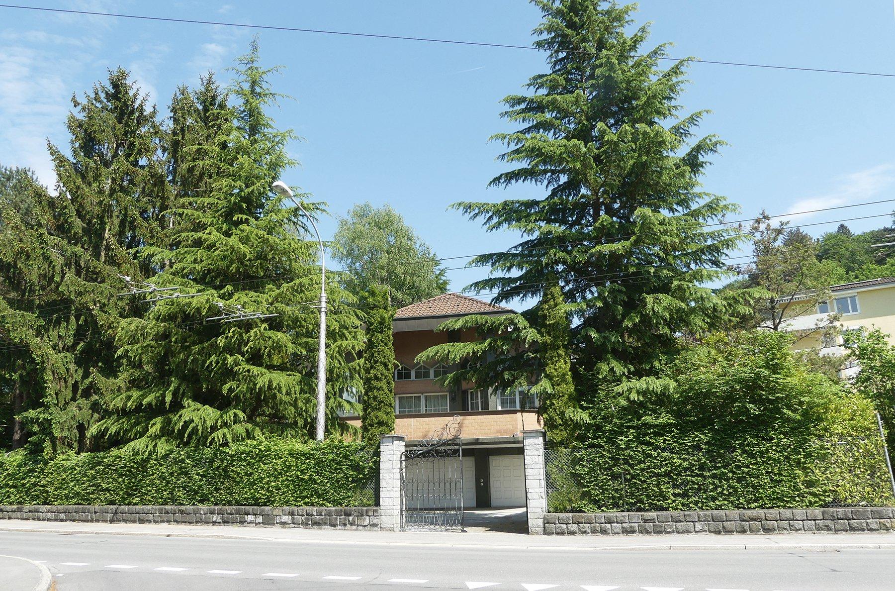 So sah es einst aus : Die Liegenschaft an der Sternmattstrasse 68 war von hohen Tannen, Gebüschen und einem Zaun umgeben.