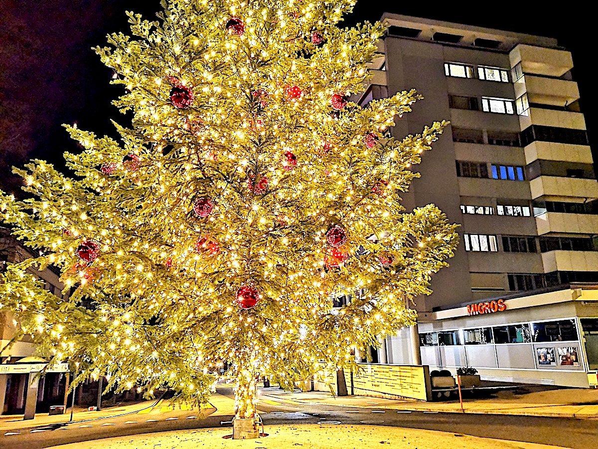 Gold und weinrot: Der leuchtende Christbaum in Steinhausen ist schön – aber im Grunde eine Verlegenheitslösung.