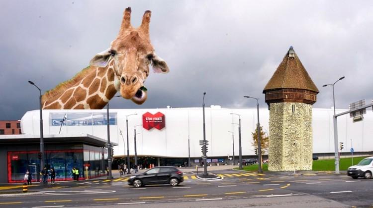 Ein kurioses Thema bedarf kurioser Bildern. Hier: Ideen, was aus der Mall of Switzerland sonst noch werden könnte.