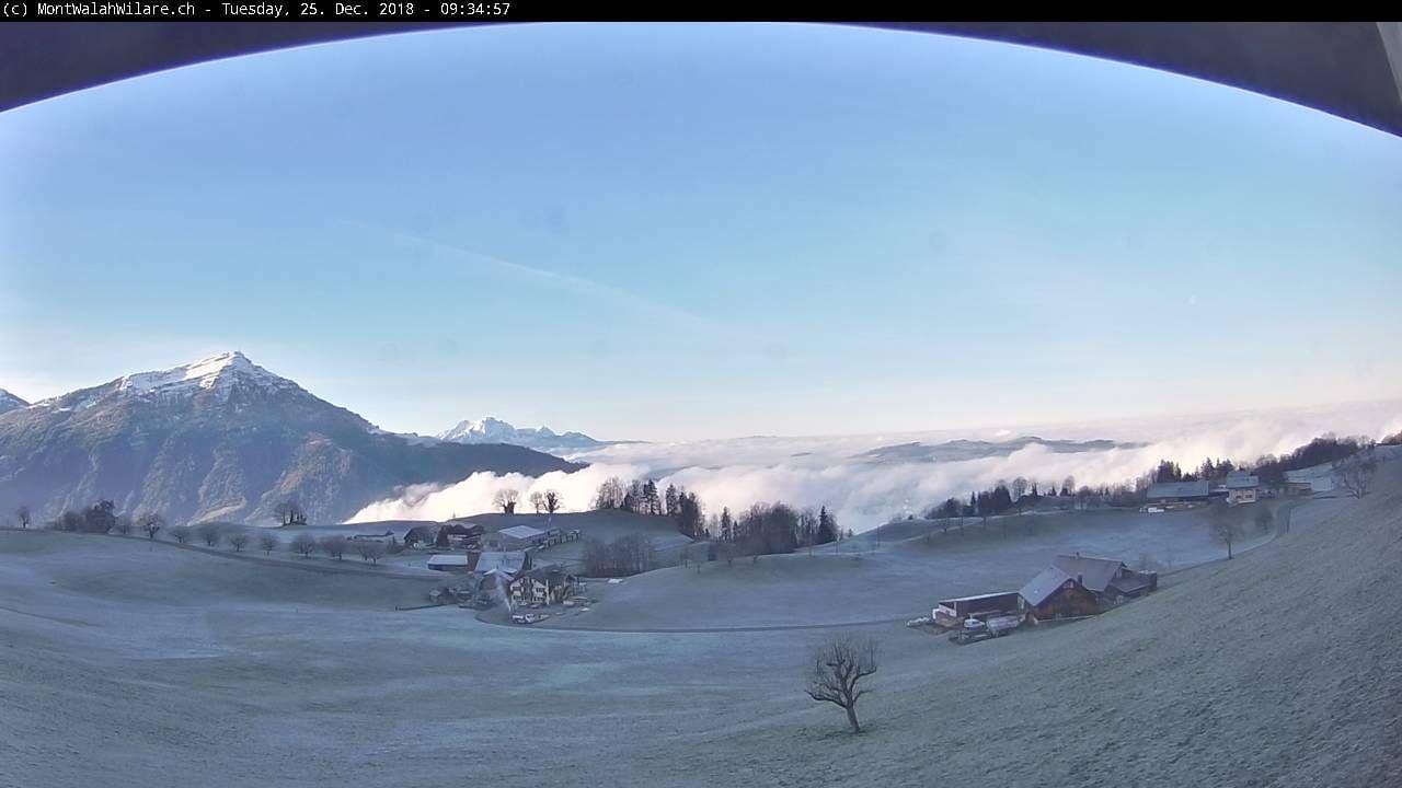 Noch liegt der Walchwilerberg im Schatten, jedoch über dem Nebel.