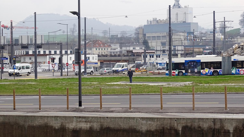Auf dieser Grünfläche möchte Metz (Bildmitte) die Cars parkieren.