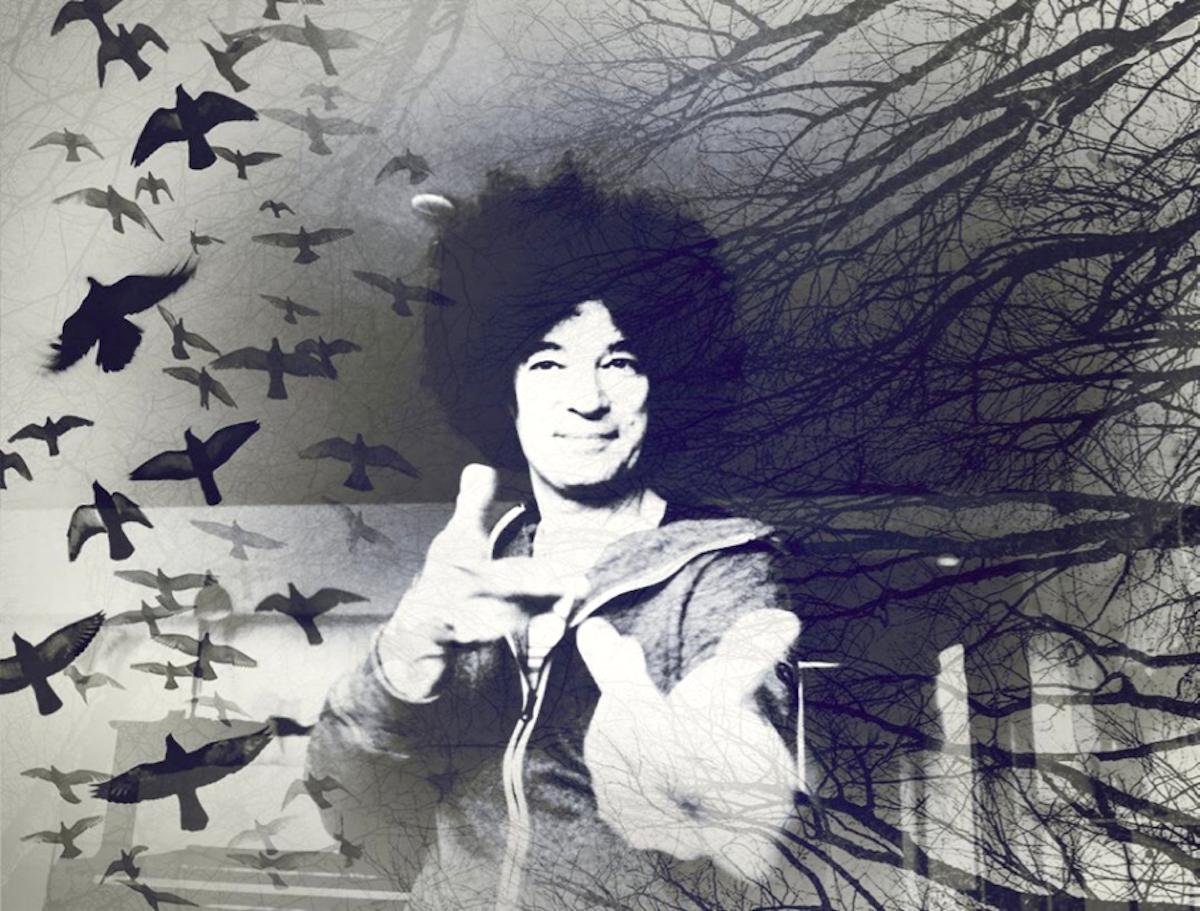 Achtung, Magie: Alex Porter lässt nicht nur Tauben verschwinden.