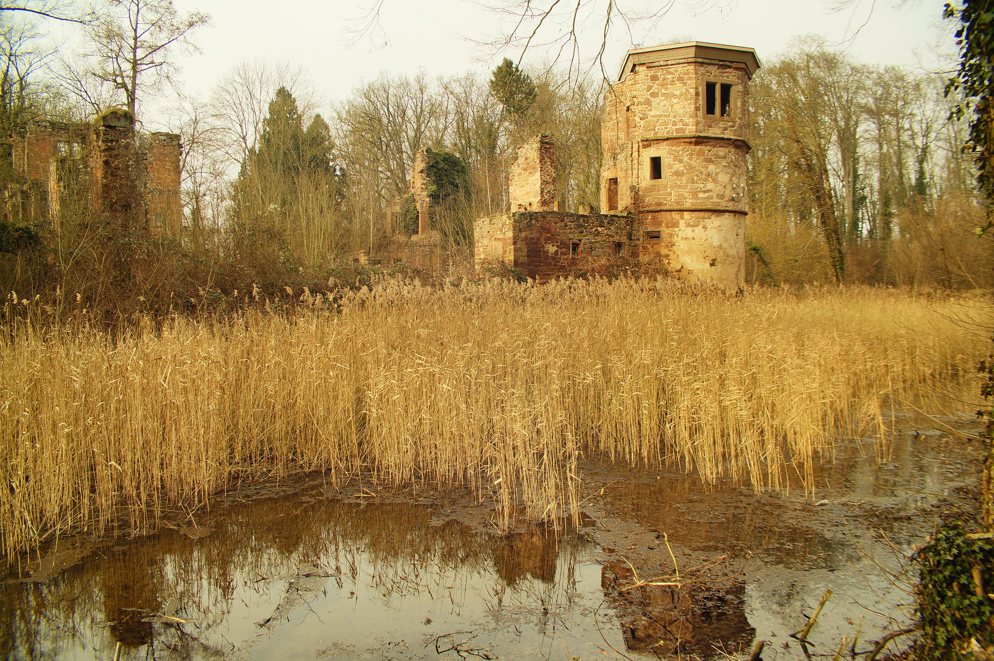 Die Sicht auf den Nordturm des Wasserschlosses Menzingen.