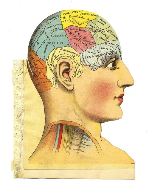 Das Mysterium des Bewusstseins – The Mystery of Consciousness