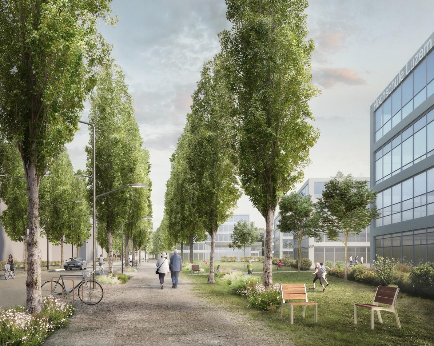 Die Technikumstrasse auf dem Abschnitt Campus Hochschule Luzern hat laut LuzernPlus Potenzial zur Aufwertung. (Visualisierung: zvg)