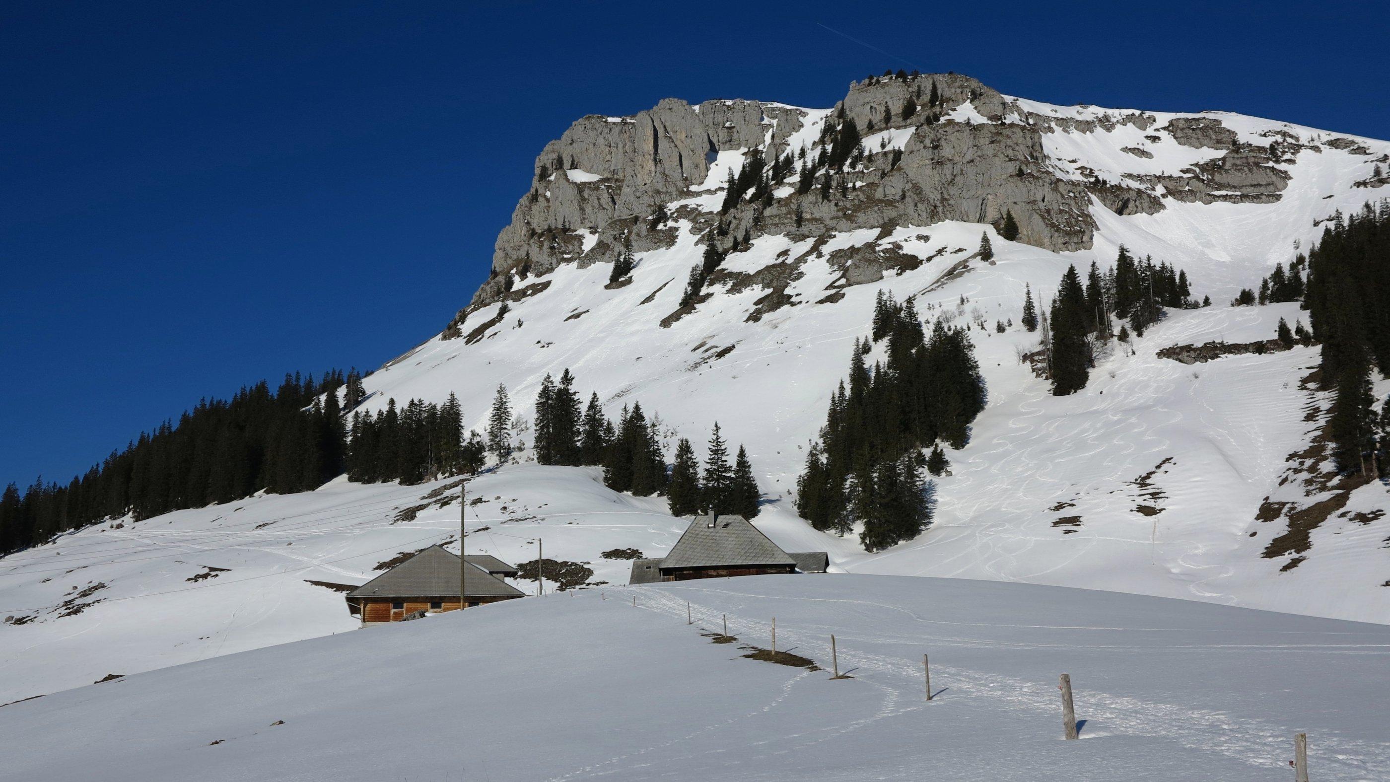 Den Böli – hier von der Alp Oberwisstanne aus fotografiert – umgeht man in der sonnigen Südflanke. Am rechten Bildrand sieht man die im Beitrag beschriebene Abfahrtsvariante ab Ober Ruchweid.