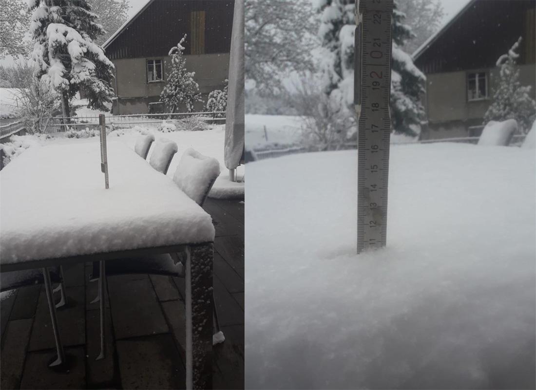 Fast 11 Zentimeter Schnee gab's in Beromünster, wie dieses Leserbild beweist.