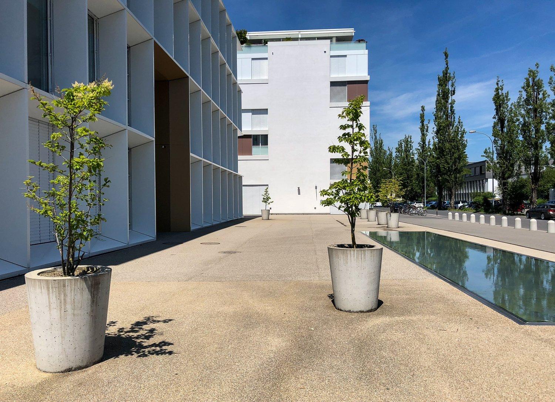 Das schlägt jeden Schattenfreund in die Flucht: Moderne Stadtgestaltung im Gebiet Tribschen.