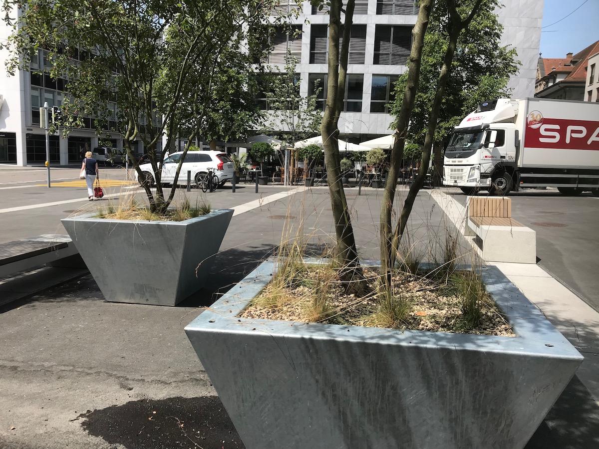 Die neuen Topfbäume am Postplatz bieten noch wenig Schatten.