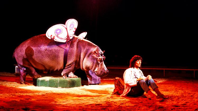 Das ausgebüxte Nilpferd Juba in der Vorstellung mit Clown Pic.